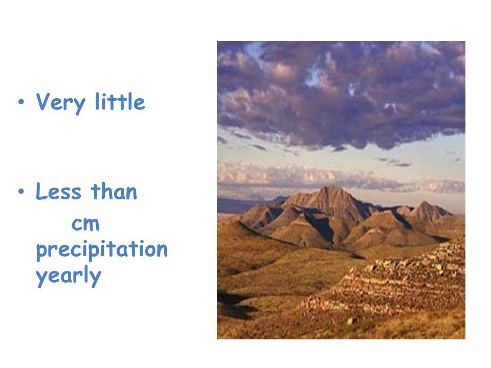 Desert Very little rainfall Less than 25 cm precipitation yearly