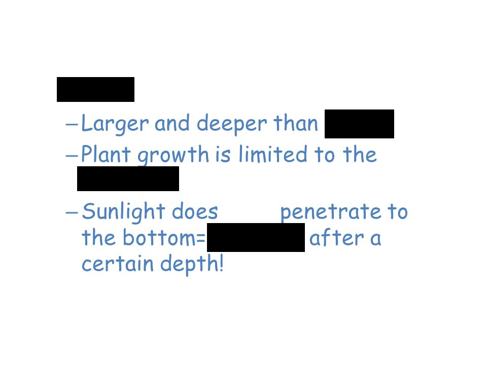 Freshwater Lakes – Larger and deeper than ponds – Plant growth is limited to the shoreline – Sunlight does NOT penetrate to the bottom= no plants afte