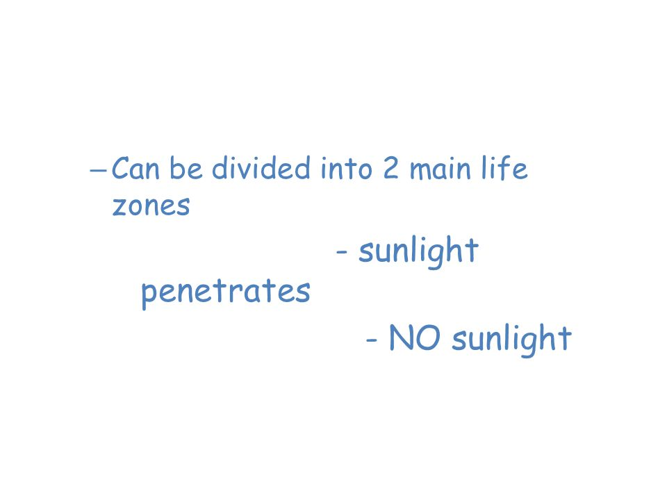 Saltwater Oceans – Can be divided into 2 main life zones 1. Photic zone- sunlight penetrates 2. Aphotic zone- NO sunlight