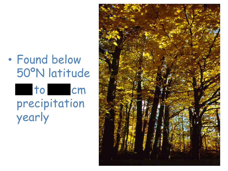 Temperate Deciduous Forest Found below 50ºN latitude 75 to 150 cm precipitation yearly
