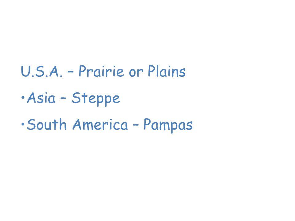 Grassland Grasslands are known by many names. U.S.A. – Prairie or Plains Asia – Steppe South America – Pampas