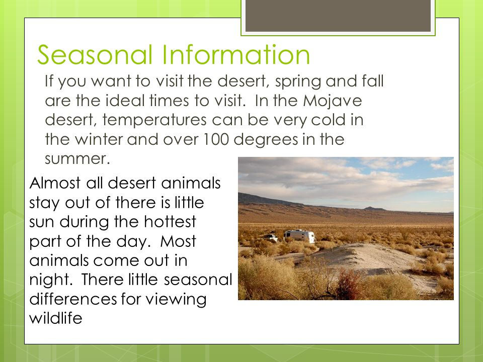 Seasonal Information If you want to visit the desert, spring and fall are the ideal times to visit.
