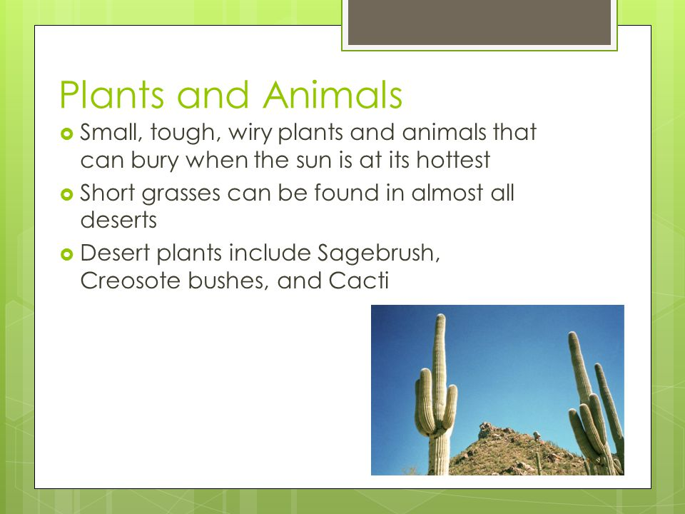 Check out the adaption of Cacti.