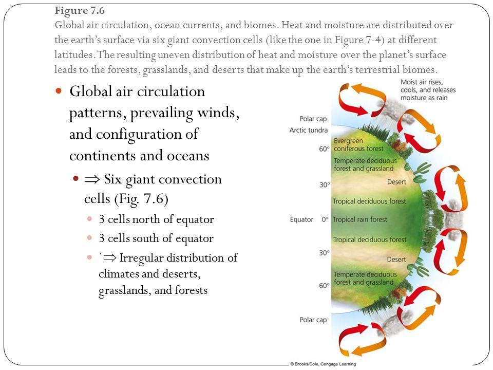 Figure 7.6 Global air circulation, ocean currents, and biomes.