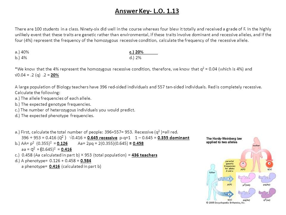 Answer Key- L.O. 1.13 There are 100 students in a class. Ninety-six did well in the course whereas four blew it totally and received a grade of F. In