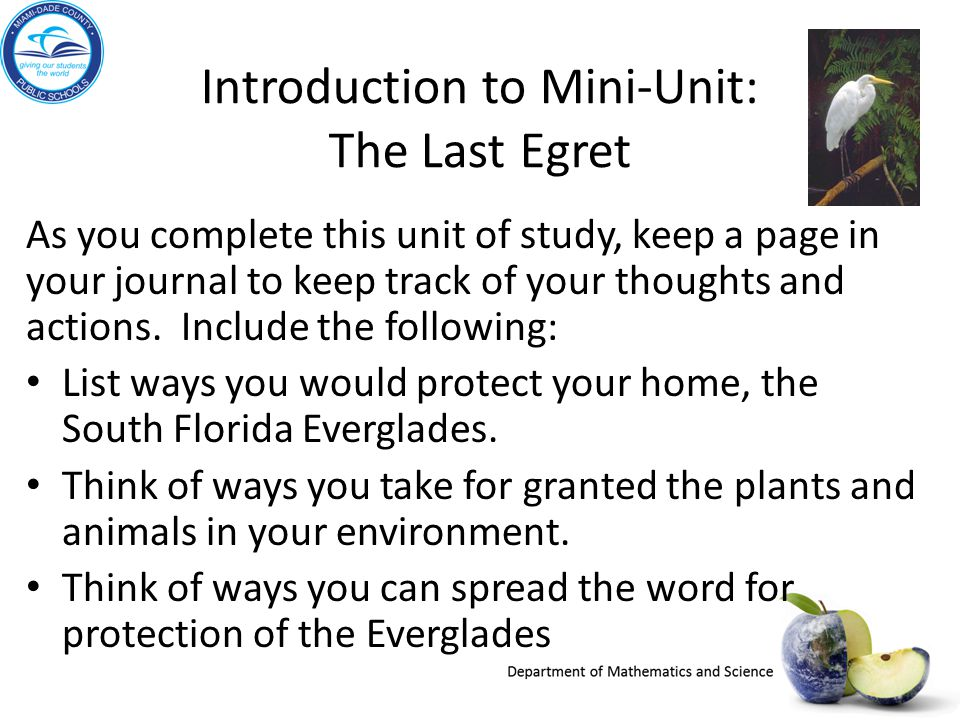 Introduction to Mini-Unit: The Last Egret As you complete this unit of study, keep a page in your journal to keep track of your thoughts and actions.