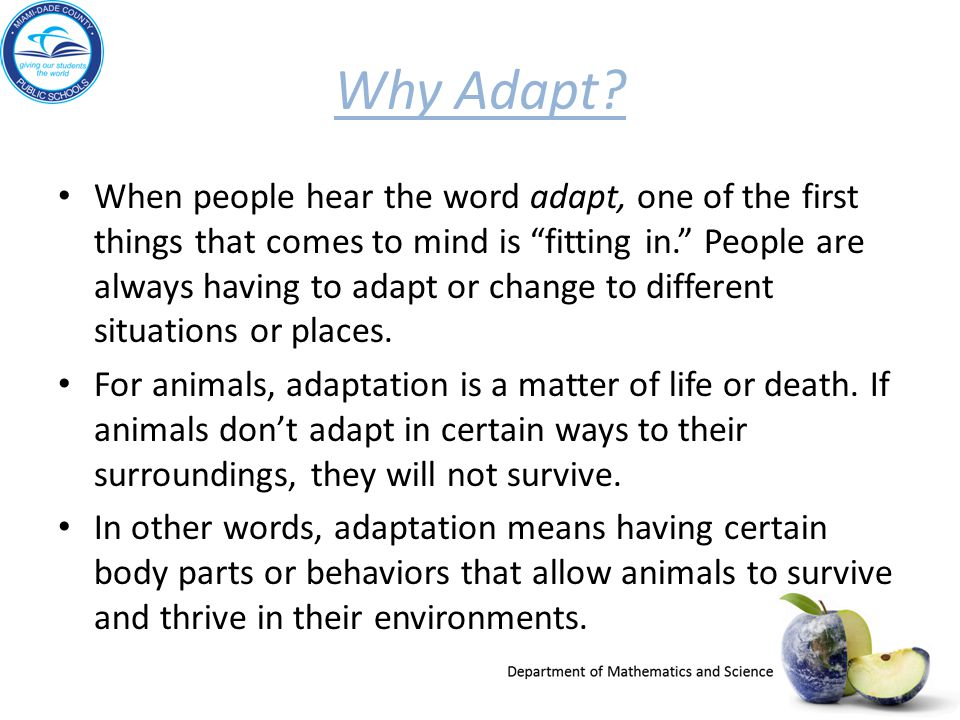 "Why Adapt? When people hear the word adapt, one of the first things that comes to mind is ""fitting in."" People are always having to adapt or change to"