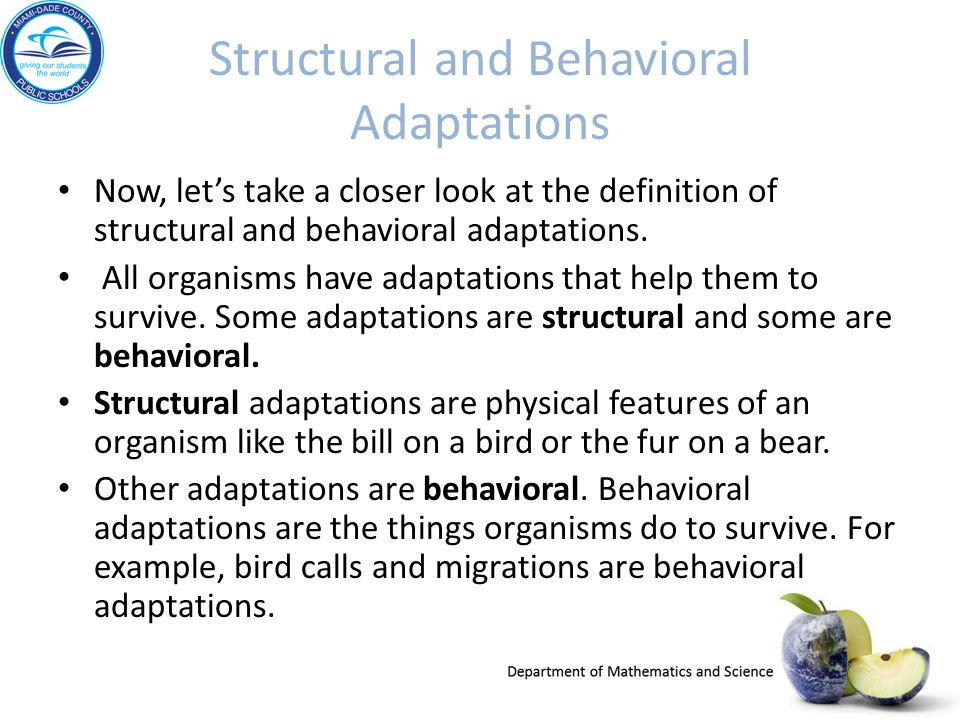 Structural and Behavioral Adaptations Now, let's take a closer look at the definition of structural and behavioral adaptations. All organisms have ada