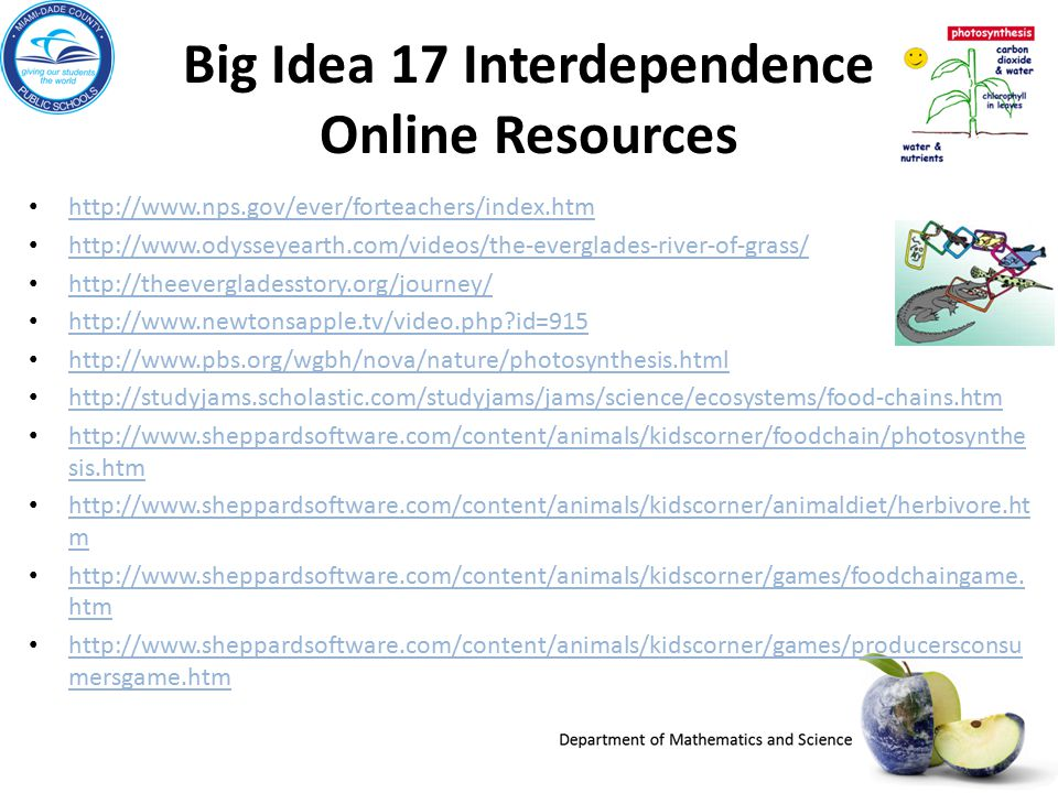 Big Idea 17 Interdependence Online Resources http://www.nps.gov/ever/forteachers/index.htm http://www.odysseyearth.com/videos/the-everglades-river-of-