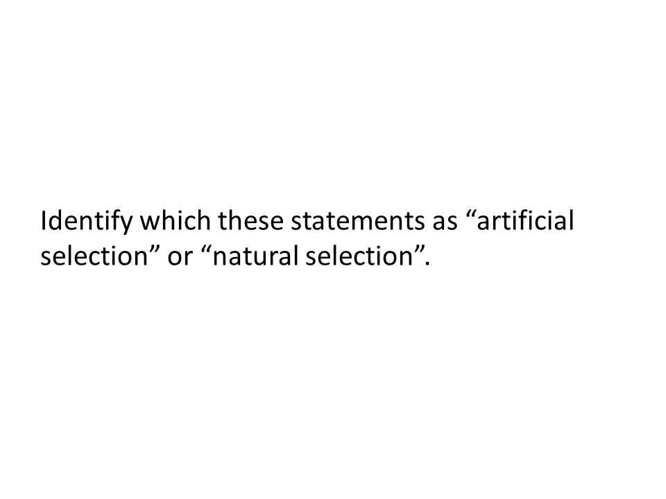 Identify which these statements as artificial selection or natural selection .