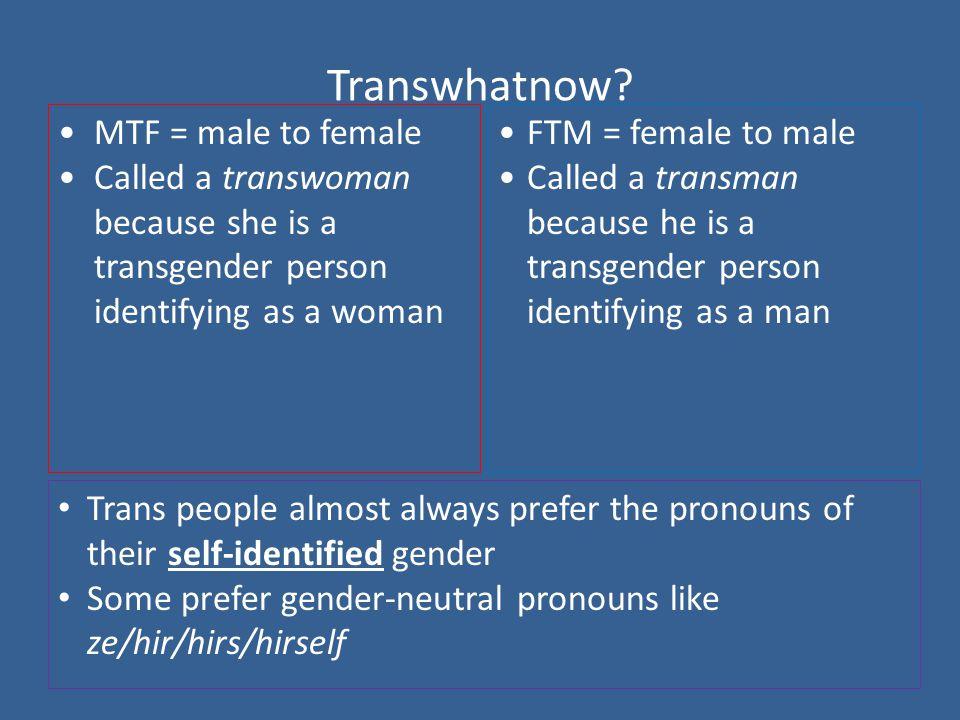 Transwhatnow.