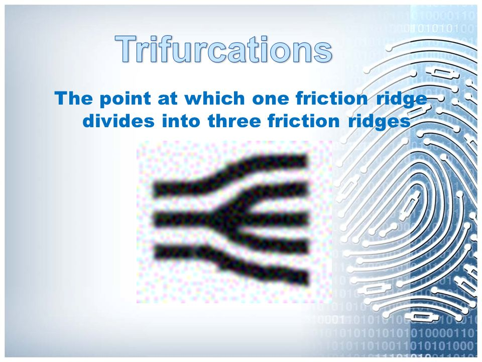 The point at which one friction ridge divides into three friction ridges