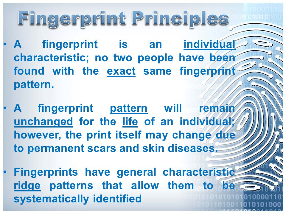 A fingerprint is an individual characteristic; no two people have been found with the exact same fingerprint pattern. A fingerprint pattern will remai
