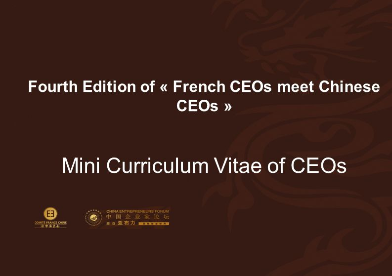 12 Mini-CV of the French CEO Fourth Edition of « French CEOs meet Chinese CEOs » Mini Curriculum Vitae of CEOs