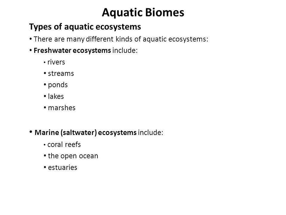 Aquatic Biomes Types of aquatic ecosystems There are many different kinds of aquatic ecosystems: Freshwater ecosystems include: rivers streams ponds l