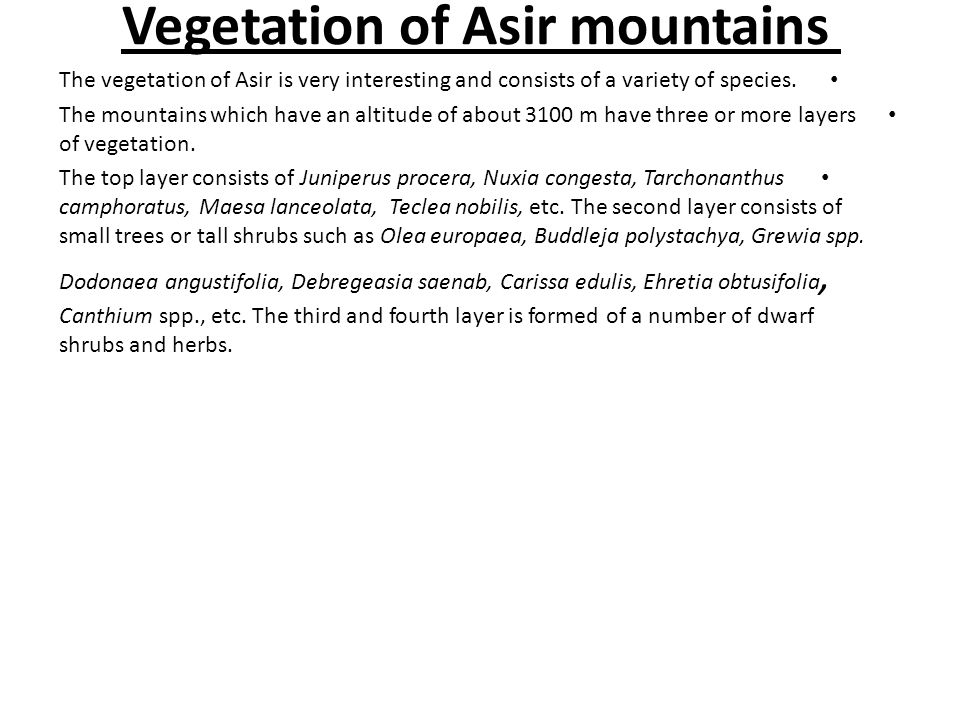 Vegetation of Asir mountains The vegetation of Asir is very interesting and consists of a variety of species. The mountains which have an altitude of