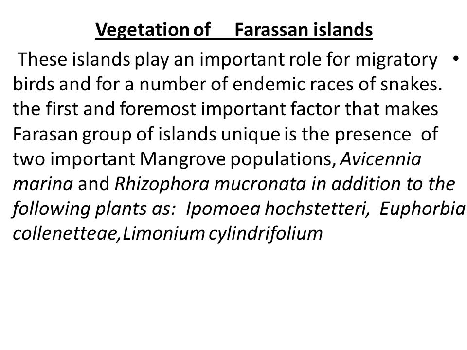 Vegetation of Farassan islands These islands play an important role for migratory birds and for a number of endemic races of snakes.