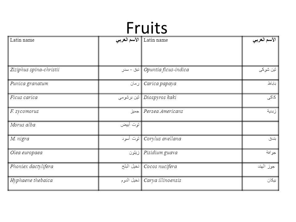 Fruits Latin name الأسم العربي Latin name الأسم العربي Ziziphus spina-christii نبق - سدر Opuntia ficus-indica تين شوكى Punica granatum رمان Carica pap