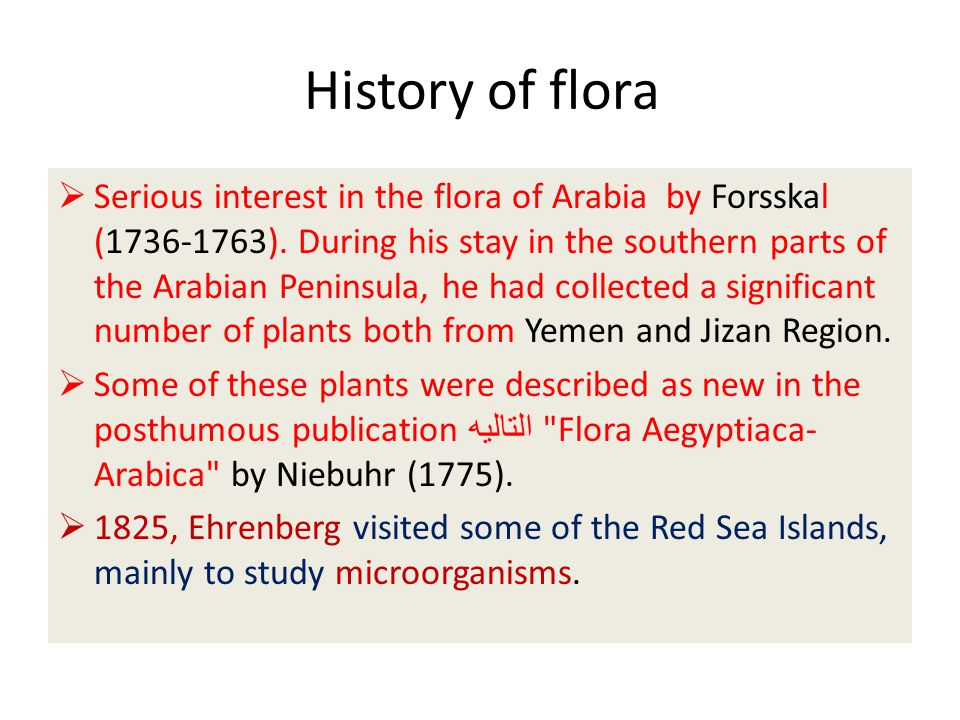 History of flora  Serious interest in the flora of Arabia by Forsskal (1736-1763).