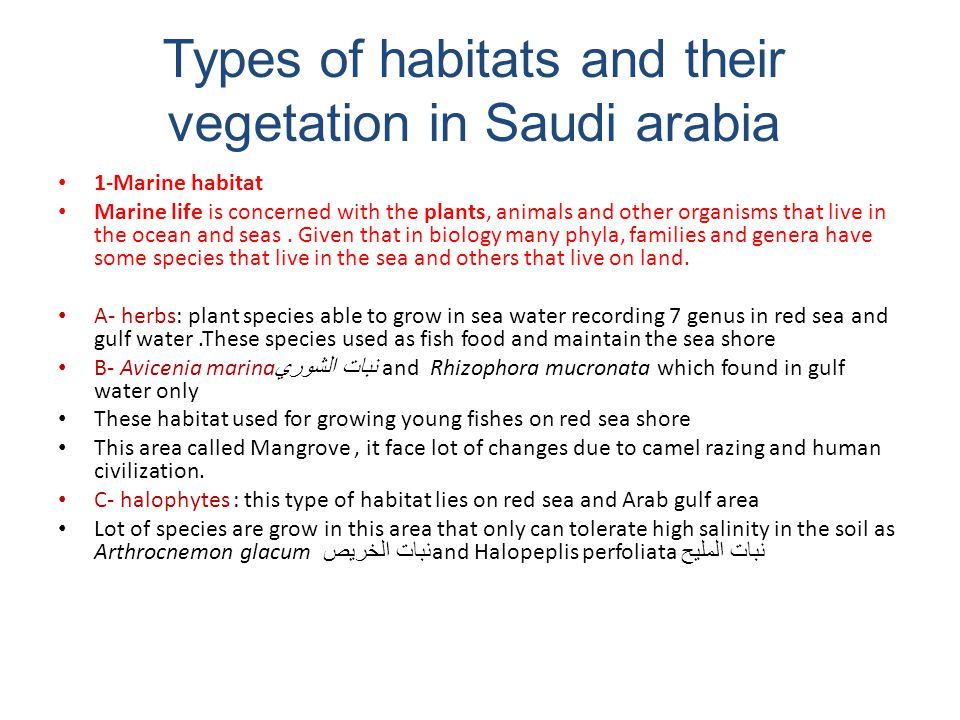 Types of habitats and their vegetation in Saudi arabia 1-Marine habitat Marine life is concerned with the plants, animals and other organisms that liv