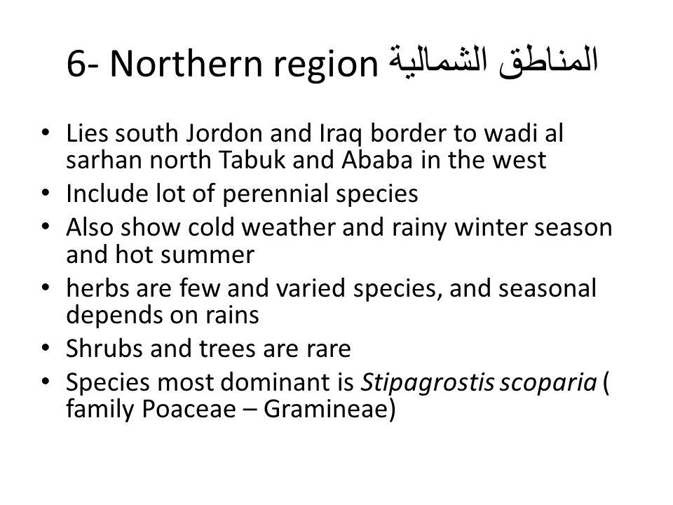 المناطق الشمالية 6- Northern region Lies south Jordon and Iraq border to wadi al sarhan north Tabuk and Ababa in the west Include lot of perennial spe