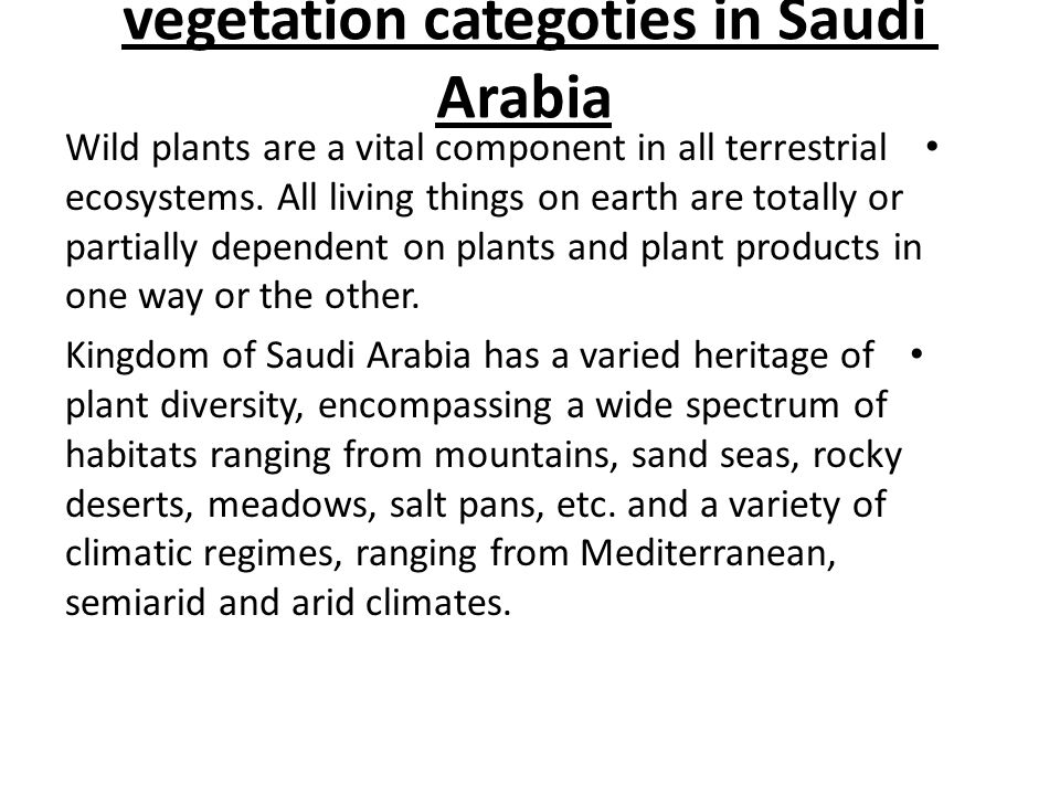 vegetation categoties in Saudi Arabia Wild plants are a vital component in all terrestrial ecosystems.