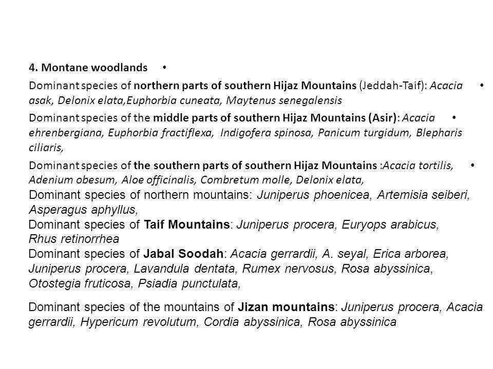 4. Montane woodlands Dominant species of northern parts of southern Hijaz Mountains (Jeddah-Taif): Acacia asak, Delonix elata,Euphorbia cuneata, Mayte