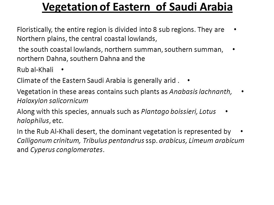 Vegetation of Eastern of Saudi Arabia Floristically, the entire region is divided into 8 sub regions. They are Northern plains, the central coastal lo