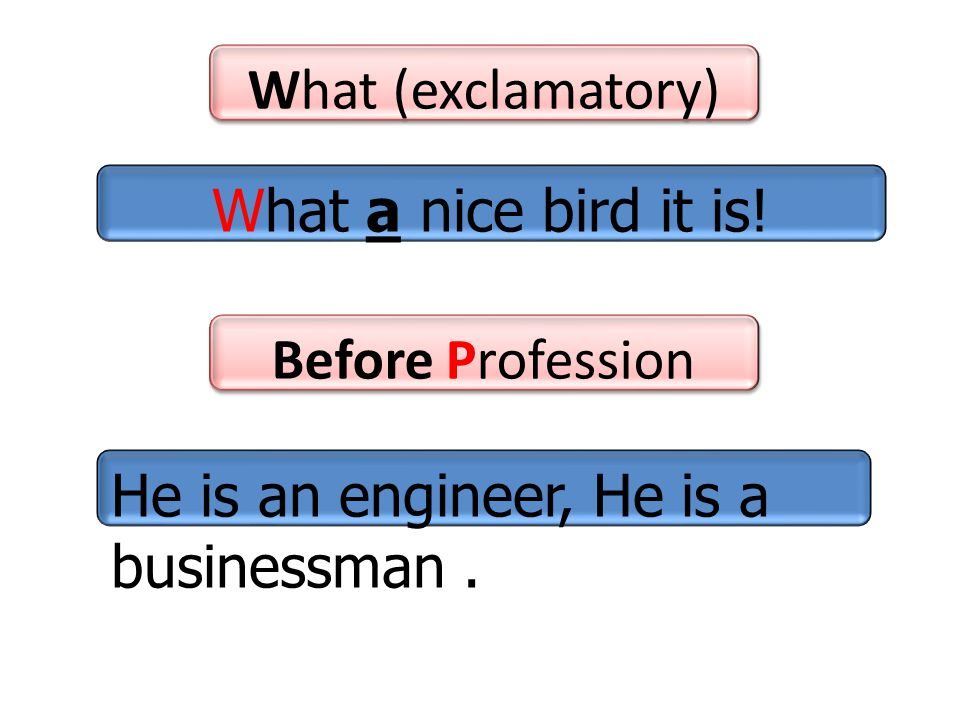 Before Profession What (exclamatory) He is an engineer, He is a businessman.