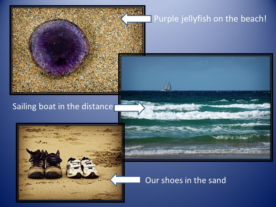 Purple jellyfish on the beach! Sailing boat in the distance Our shoes in the sand