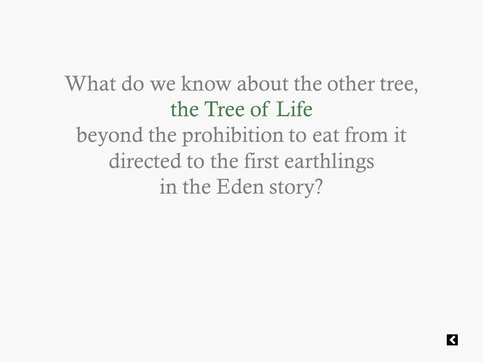 What do we know about the other tree, the Tree of Life beyond the prohibition to eat from it directed to the first earthlings in the Eden story
