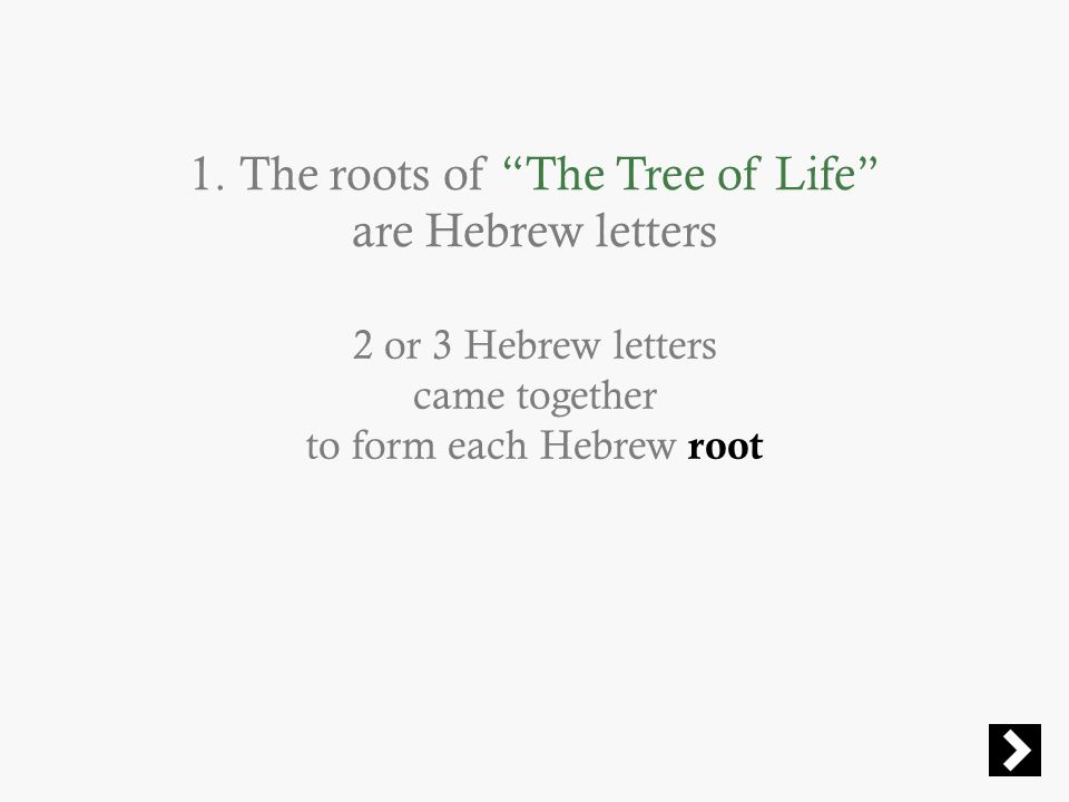 "1. The roots of ""The Tree of Life"" are Hebrew letters 2 or 3 Hebrew letters came together to form each Hebrew root"