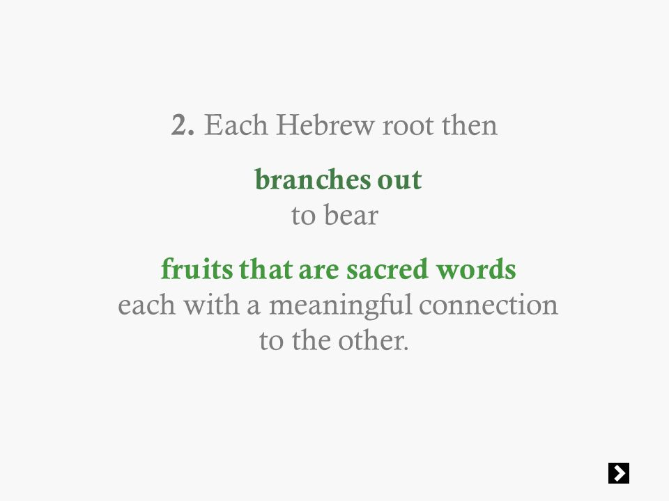 2. Each Hebrew root then branches out to bear fruits that are sacred words each with a meaningful connection to the other.