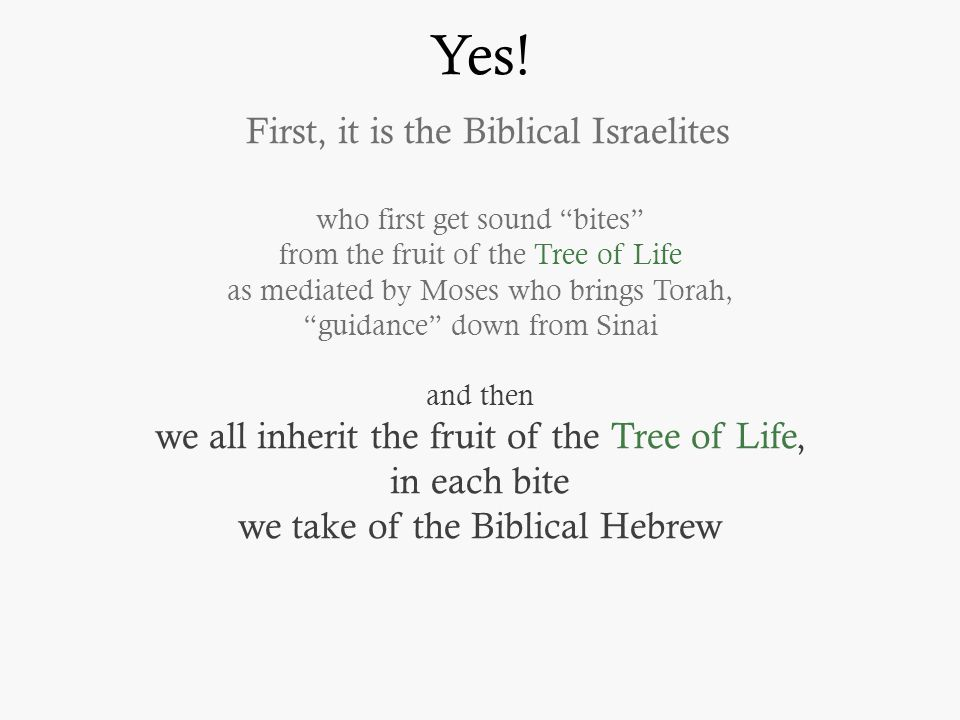 "Yes! First, it is the Biblical Israelites who first get sound ""bites"" from the fruit of the Tree of Life as mediated by Moses who brings Torah, ""guida"