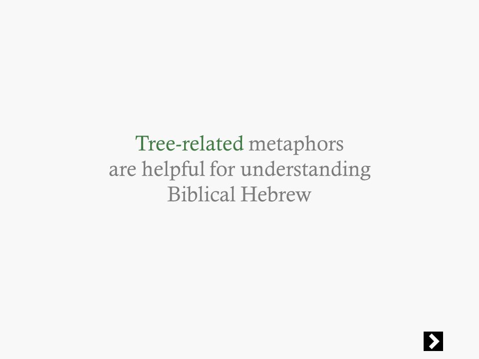 Tree-related metaphors are helpful for understanding Biblical Hebrew