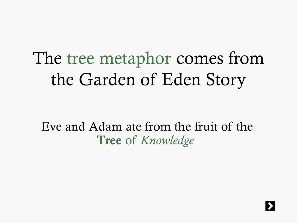 The tree metaphor comes from the Garden of Eden Story Eve and Adam ate from the fruit of the Tree of Knowledge
