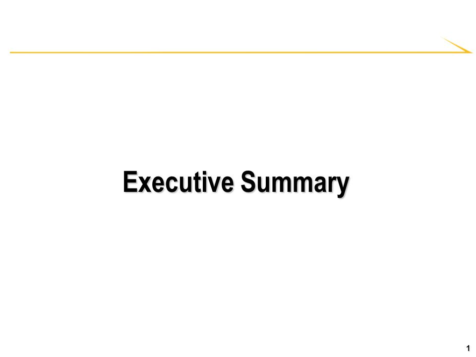 1 Executive Summary