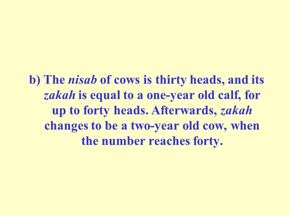 b) The nisab of cows is thirty heads, and its zakah is equal to a one-year old calf, for up to forty heads.