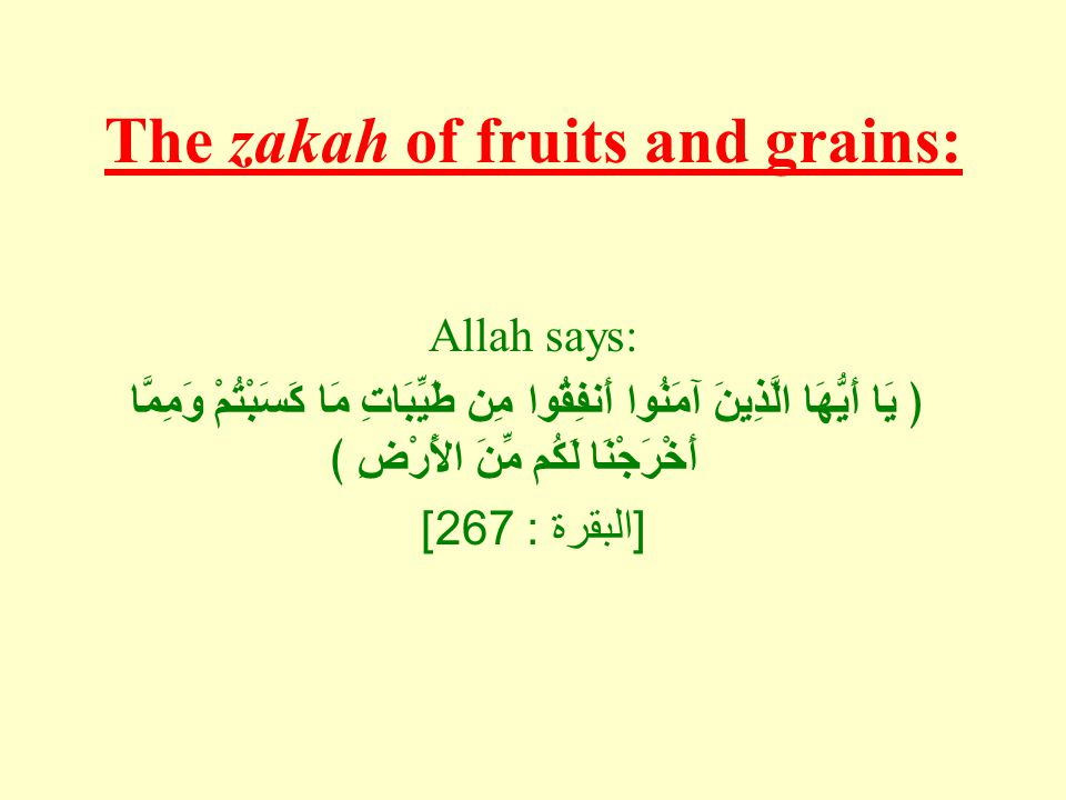 The zakah of fruits and grains: Allah says: ﴿ يَا أَيُّهَا الَّذِينَ آمَنُوا أَنفِقُوا مِن طَيِّبَاتِ مَا كَسَبْتُمْ وَمِمَّا أَخْرَجْنَا لَكُم مِّنَ الأًرْضِ ﴾ [ البقرة : 267]