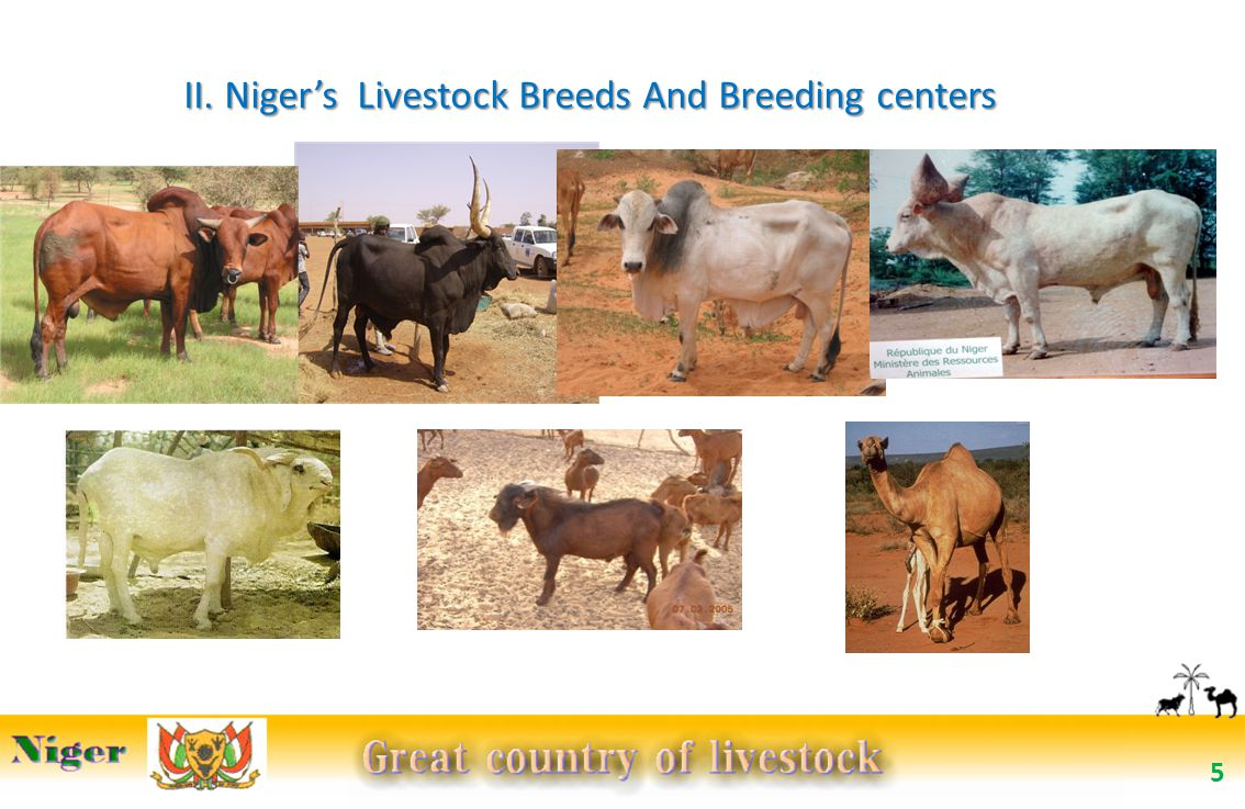 5 II. Niger's Livestock Breeds And Breeding centers
