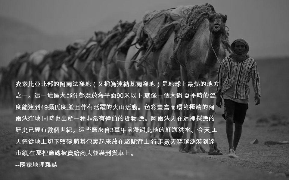 Pack animals: Camels walk in single file behind a salt merchant through the vast, barren landscape/ Reuters 44