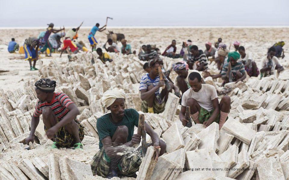 衣索比亞北部的阿爾法窪地(又稱為達納基爾窪地)是地球上最熱的地方 之一。這一地區大部分都處於海平面 90 米以下﹐就像一個大鍋﹐夏季時的溫 度能達到 49 攝氏度﹐並且伴有活躍的火山活動。色彩豐富而環境極端的阿 爾法窪地﹐同時也出產一種非常有價值的貨物﹕鹽。阿爾法人在這裡採鹽的 歷史已經有數個世紀。這些鹽來自 3 萬年前漫過此地的紅海洪水。今天﹐工 人們從地上切下鹽磚﹐將其包裹起來放在駱駝背上﹐行走數天穿越沙漠到達 市鎮﹐在那裡鹽磚被賣給商人並裝到貨車上。 -- 國家地理雜誌 4