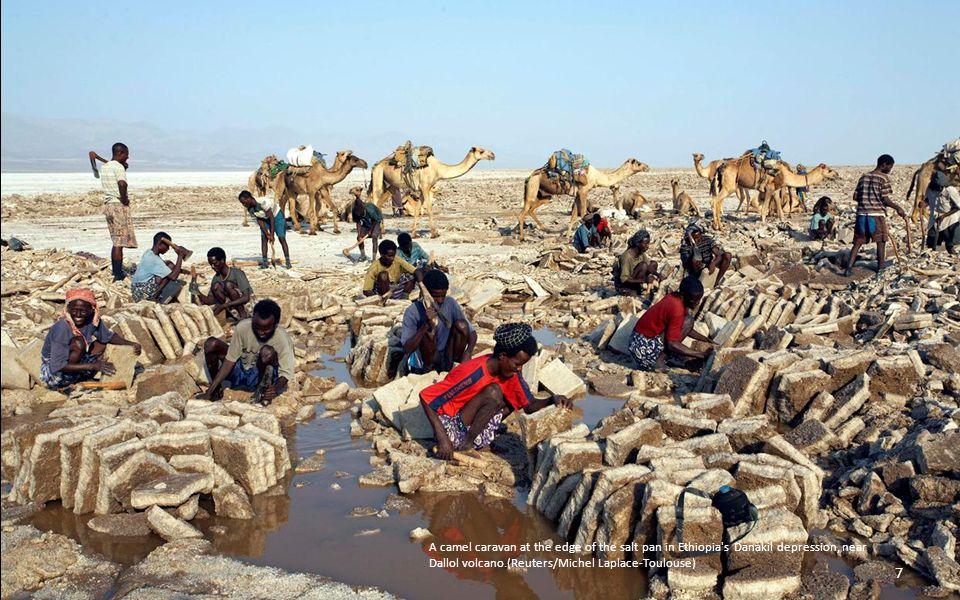 A camel caravan at the edge of the salt pan in Ethiopia s Danakil depression, near Dallol volcano.(Reuters/Michel Laplace-Toulouse) 7