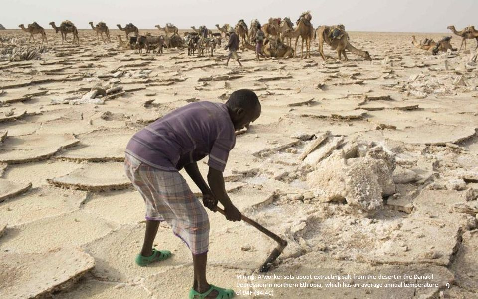 Mining: A worker sets about extracting salt from the desert in the Danakil Depression in northern Ethiopia, which has an average annual temperature of 94F (34.4C) 9