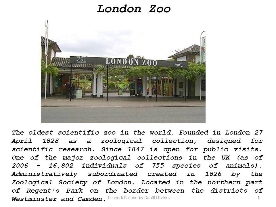 London Zoo The oldest scientific zoo in the world.