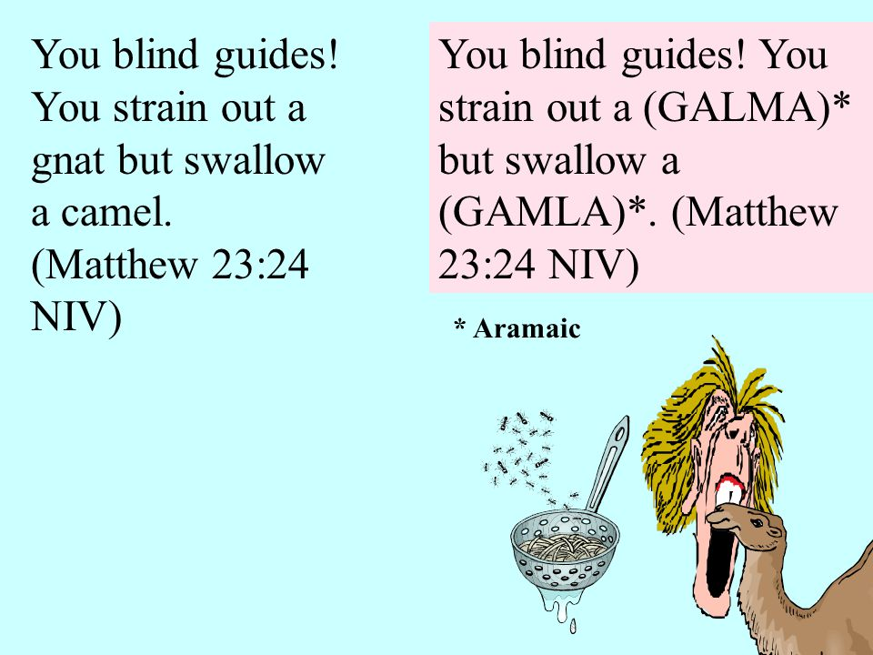 You blind guides! You strain out a (GALMA)* but swallow a (GAMLA)*. (Matthew 23:24 NIV) * Aramaic