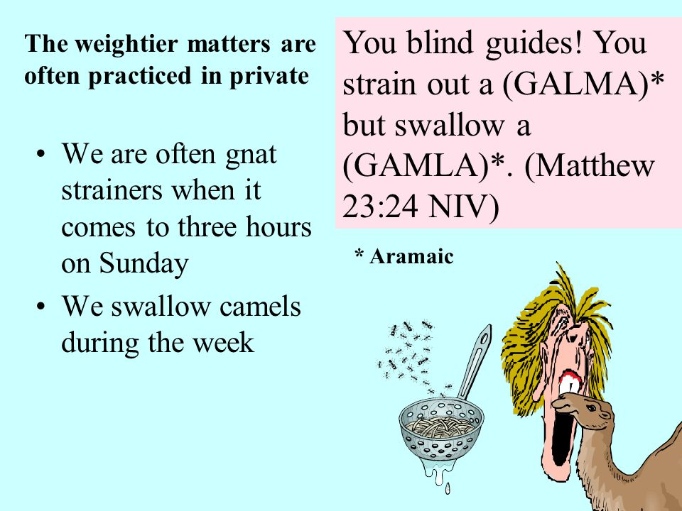 You blind guides. You strain out a (GALMA)* but swallow a (GAMLA)*.