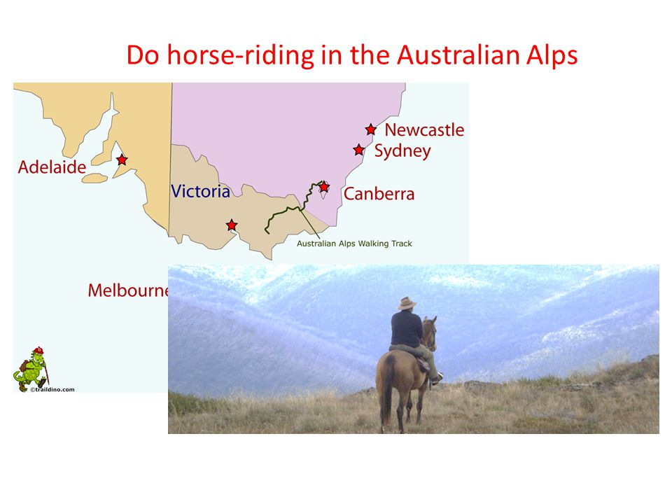 Do horse-riding in the Australian Alps