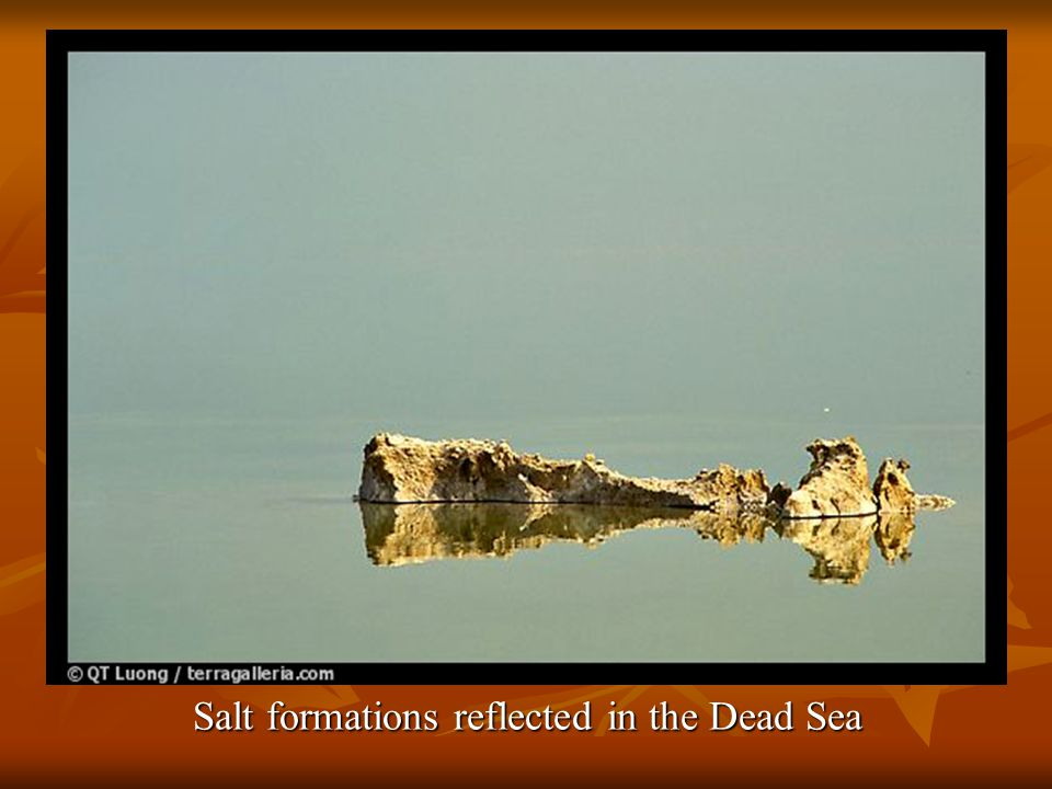 Visitor reading while floating in the Dead Sea