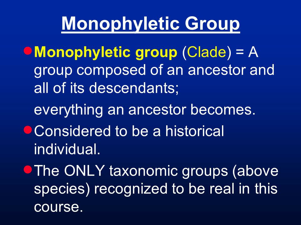 Monophyletic Group  Monophyletic group (Clade) = A group composed of an ancestor and all of its descendants; everything an ancestor becomes.